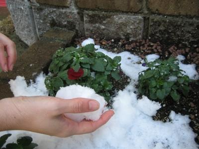 雪かき1.JPG