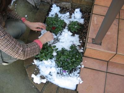 雪かき2.JPG
